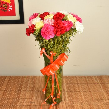 15 Mix Carnations in Vase